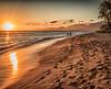 Ocean Sunset 24 x 20 canvas-1