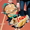 OCEAN CITY, NJ - APRIL 07: Connor, 2 yeasr old owner dressed as a (Hamburger) and Buddy, 7 year old Pomerian mixed breed (Hotdog) attends the Woof N Paws event on April 7, 2012 in Ocean City, New Jersey.