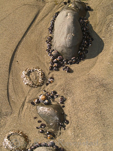 Ocean Jewels Big Sur Image I.D. #:  O-06-002