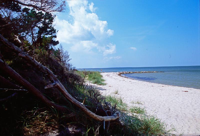 Springers Point -- Ocracoke NC