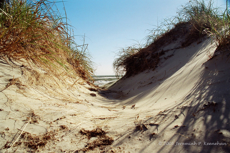 Looking Thru the Dunes at Ocracoke NC