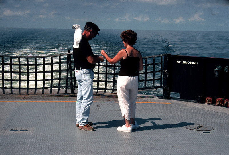 On the 'Ocracoke Ferry' from either Hatteras, Cedar Island or Swanquarter, I don't remember.