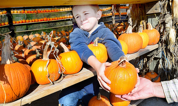 KEVIN HARVISON | Staff photo<br /> Buck Conley, of Longtown, passes the perfect pumpkin he picked at McClendon's Garden Center to his mother.