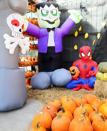 KEVIN HARVISON | Staff photo<br /> Giant inflatables stand guard at McClendon's Garden Center as people search for fall and Halloween decorations.
