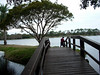 Pinellas Trail - Close to Home (GCH567)