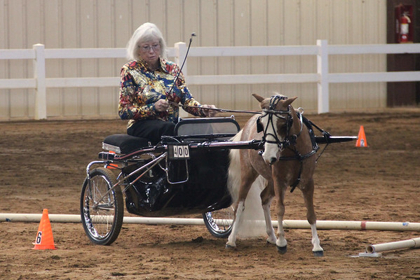 Old Dominion Miniature Horse Show and Horse Center Events