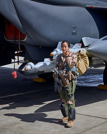 """""""Pipper"""" prior to flying a combat mission"""
