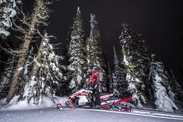 Night shoot with SR Vipers M-TX sleds RLT-7239