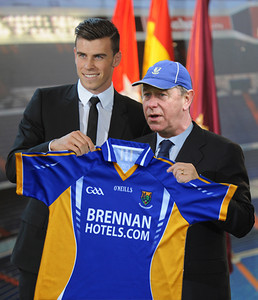 Bale Transfers to Wicklow