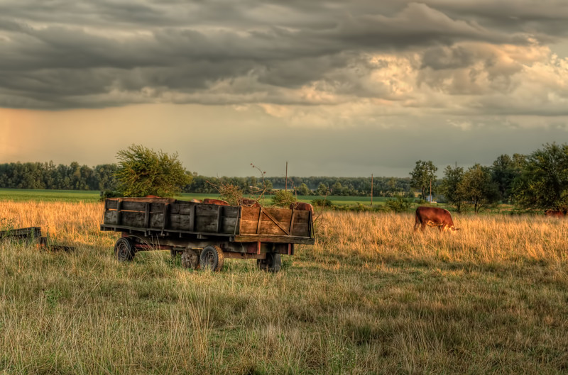 Sunset Wagon sitting behind the Schwartz Sawmill.