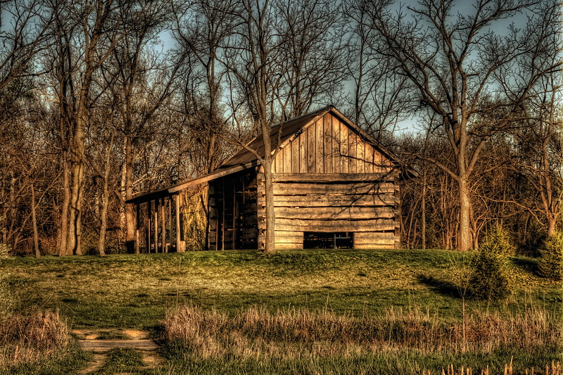 The Old Cabin in the Woods