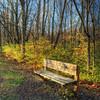 Storybook Bench
