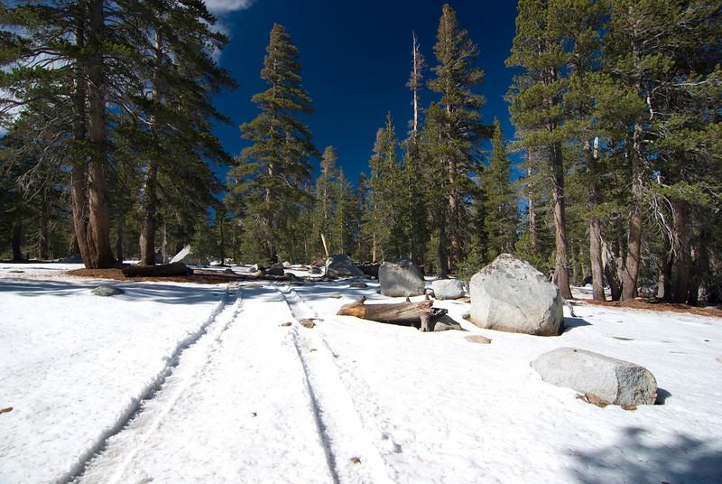 Coyote Jeep Trail pic1
