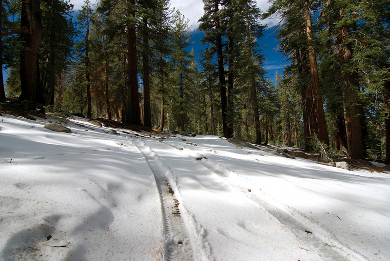 Coyote Jeep Trail pic2