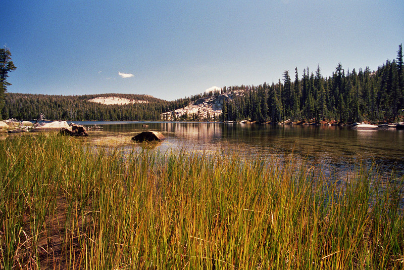 NorthWest Shore of Cyote Lake
