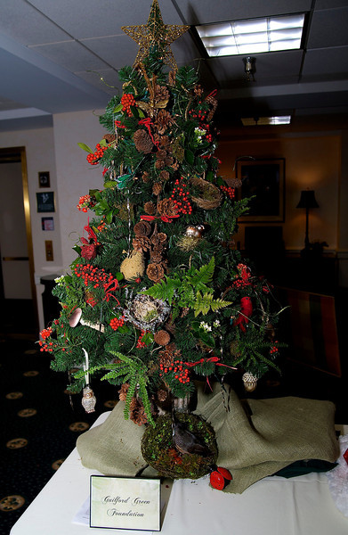 The Guilford Green Foundation's Tree