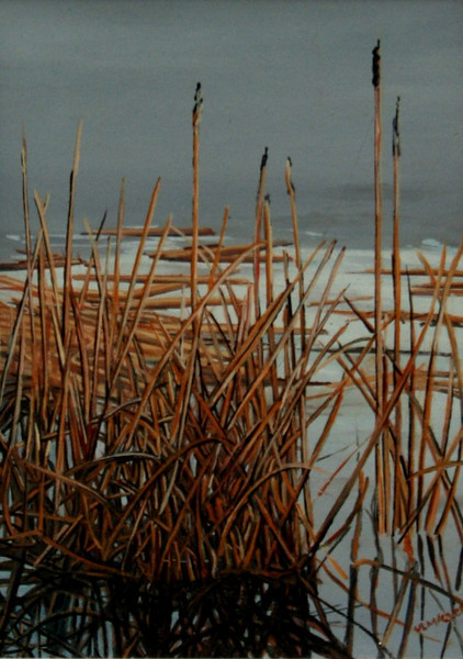 CATTAIL IN ICE<br /> 8 X 6<br /> oil on board<br /> <br /> ON DISPLAY AT GALLERY 78