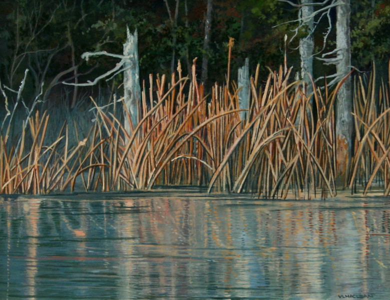 CATTAILS WITH SPRUCE<br /> 7.5 X 9.75<br /> oil on board<br /> <br /> <br /> ON DISPLAY AT A MATTER OF TASTES