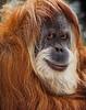 Zoo 4-24-2010 (77 of 78)