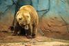 Zoo 4-24-2010 (50 of 78)