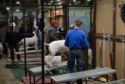 barn_shots_20210317-0019