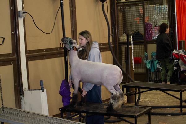 barn_shots_20210317-0016
