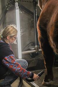 barn_shots_20210317-0001