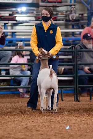 market_goats_20210317_0005