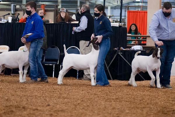 market_goats_20210317_0008