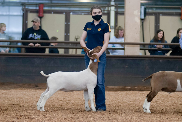 market_goats_20210317_0015
