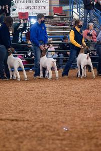 market_goats_20210317_0003
