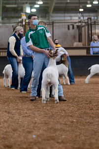 market_goats_20210317_0011