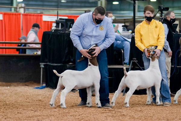 market_goats_20210317_0018