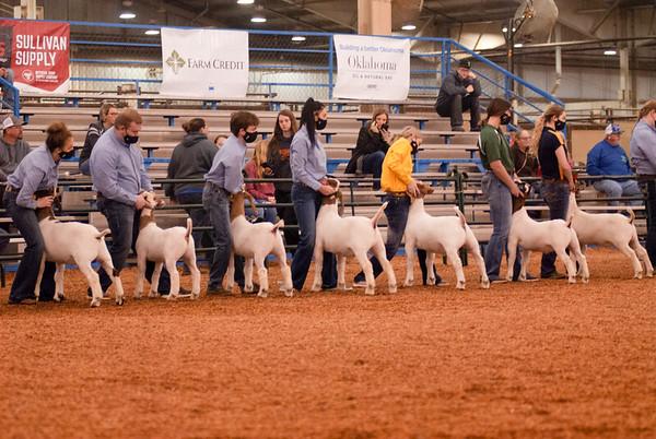 market_goats_20210317_0001
