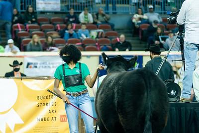 steers_20210317_0016