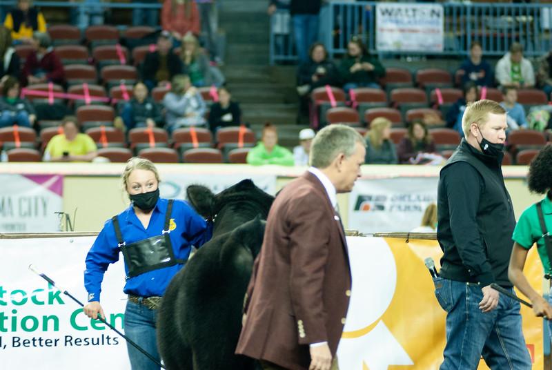 steers_20210317_0018