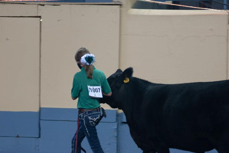 steers_20210317_0014