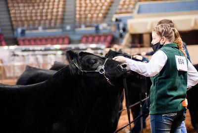 steers_20210317_0008