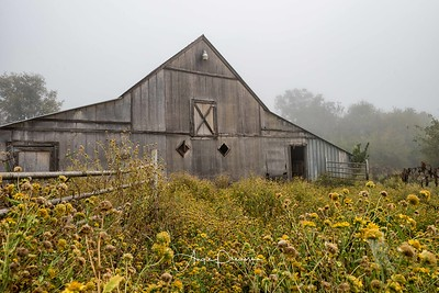 Danforth Road Barn in the Fog