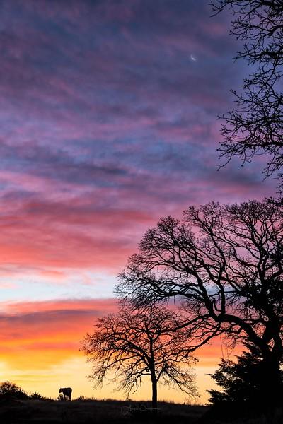 Oklahoma January Sunrise