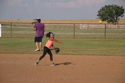 2020 Oklahoma fly catchers