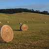 Baled hay in a field at Fancy Hill, south of Lexington on Route 11.