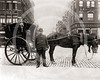 Hansom cab and driver, New York 1896.
