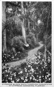 Block Path in Cypress Gardens