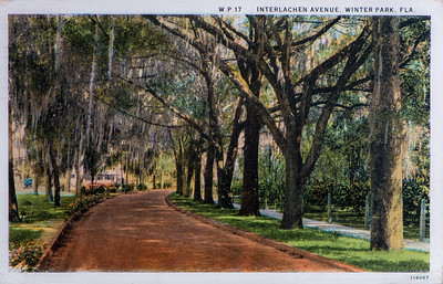 Interlachen Ave, Winter Park