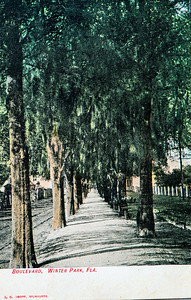 Boulevard, Winter Park