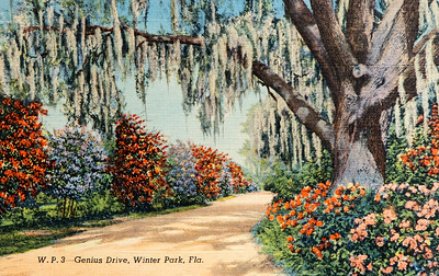 Genius Drive, Winter Park