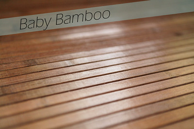 Baby Bamboo is a portable floor mat made from narrow strips of real bamboo wood.  This can be used in a variety of ways to design your customized portraits.
