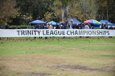 Trinity League Championships 2011