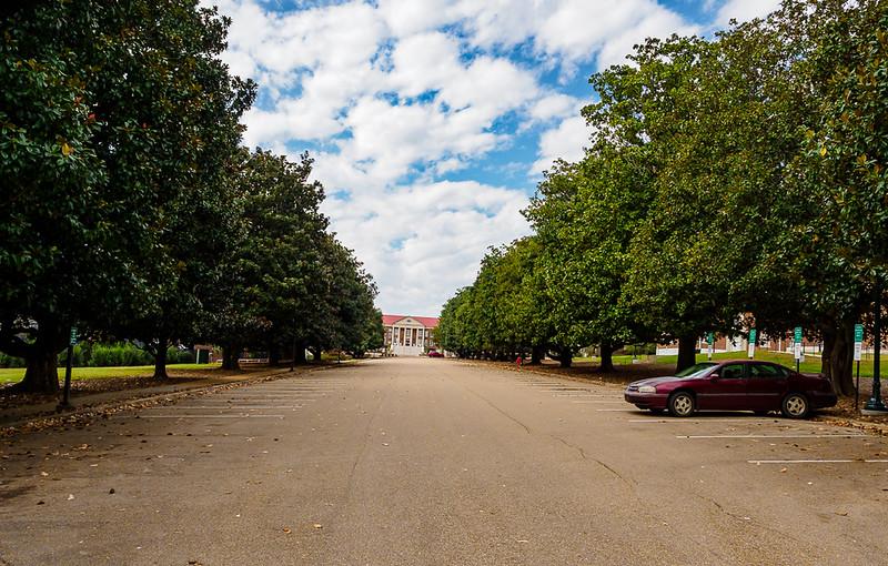 Street To Guyton Hall